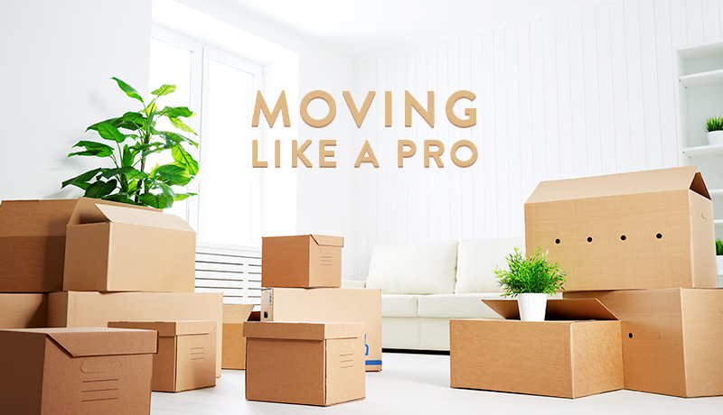 image of Moving house like a pro