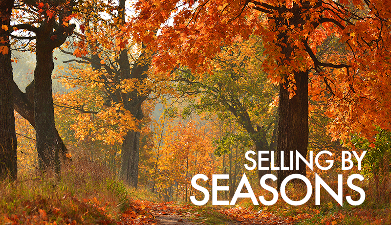 image of Seasonal Selling