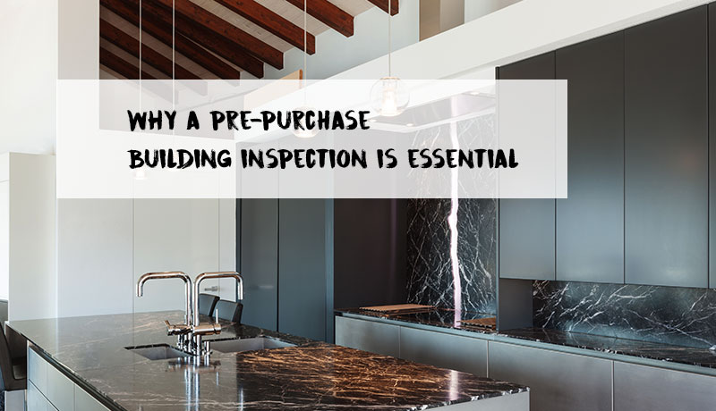 image of 5 reasons a pre-purchase building inspection is essential